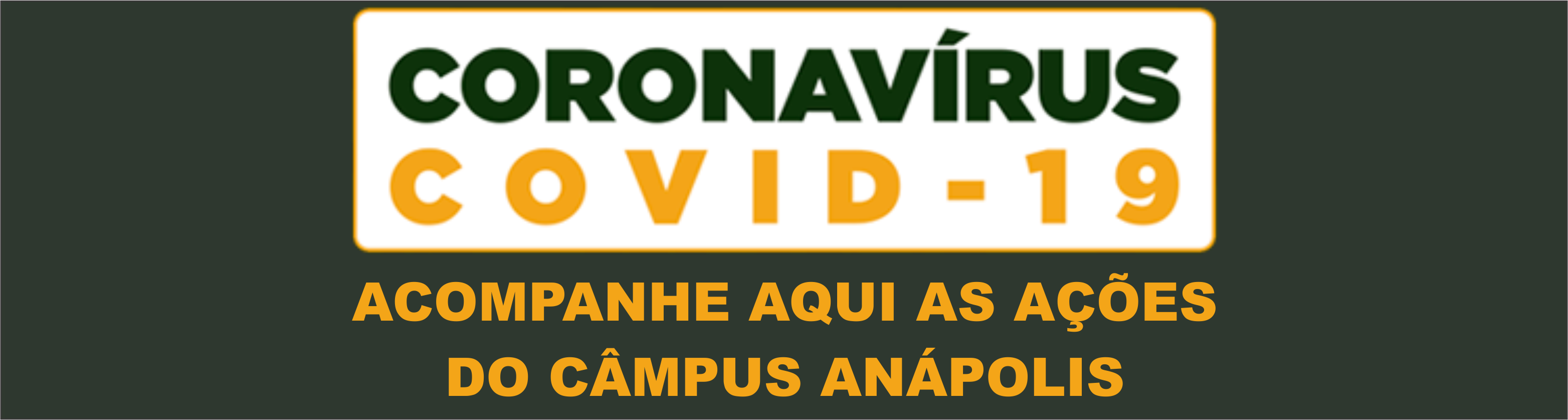Ações IFG Anápolis - Covid 19